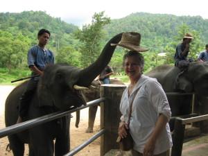 carmine-elephant-hat